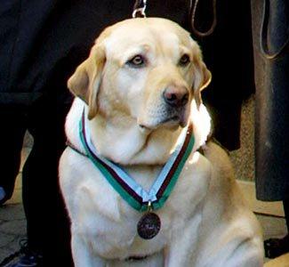 Roselle Wears Medal